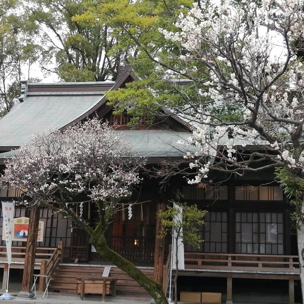 熊本大神宮の本殿