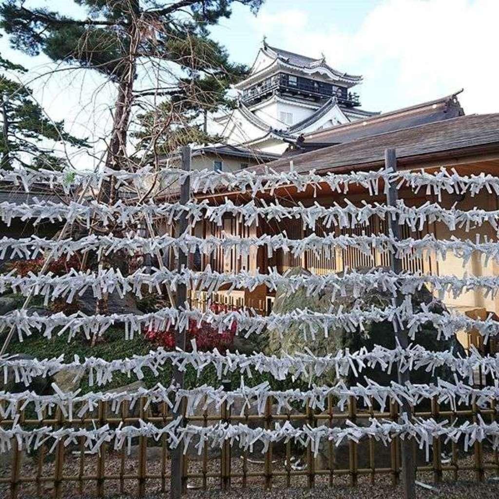 龍城神社のおみくじ