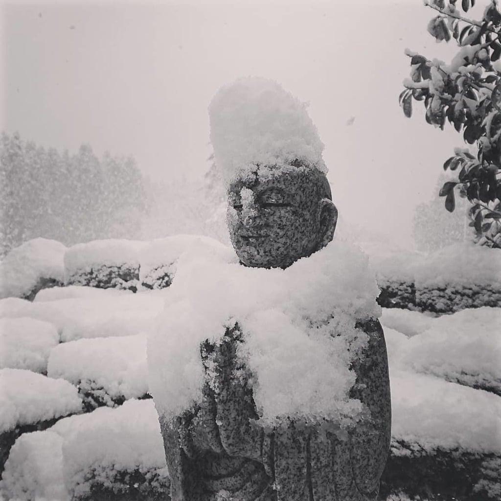 壽徳寺 じゅとくじの地蔵