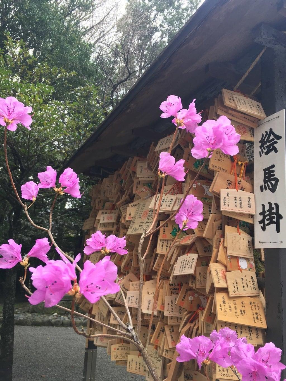 報徳二宮神社の絵馬