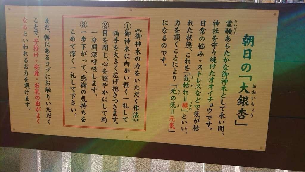 朝日氷川神社の歴史