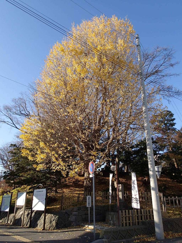湯倉神社の景色