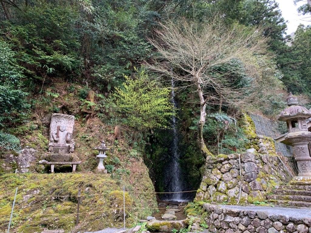 甘南美寺の自然