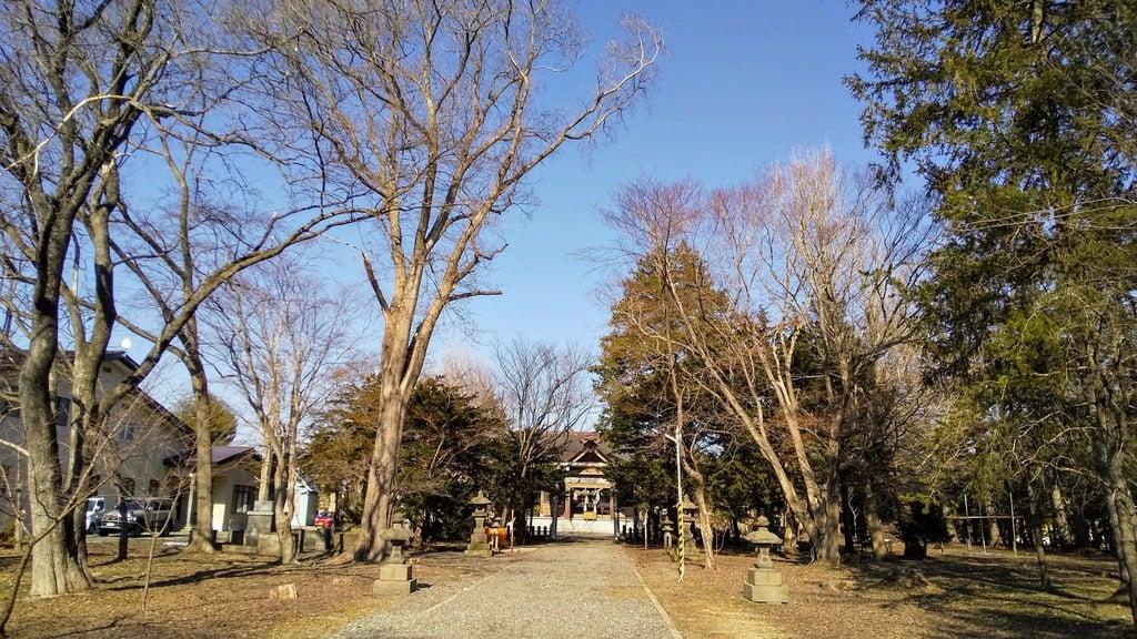 南幌神社の自然