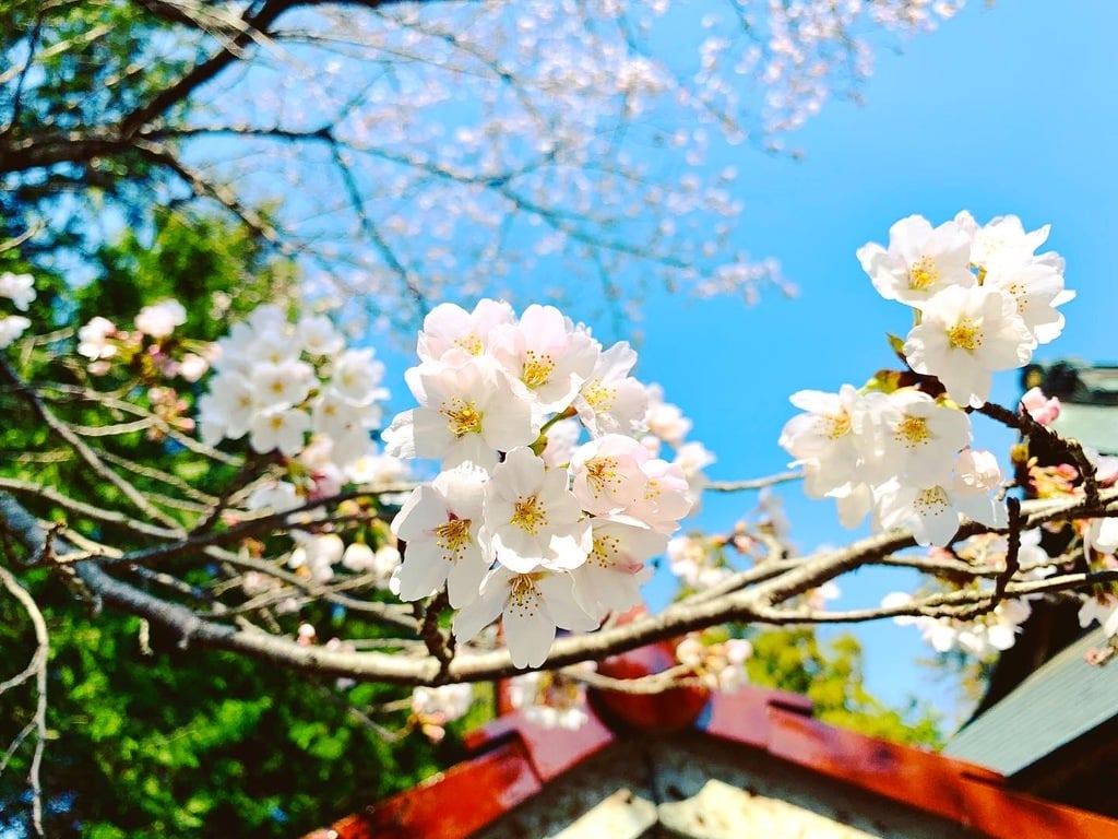 滑川神社 - 仕事と子どもの守り神の自然