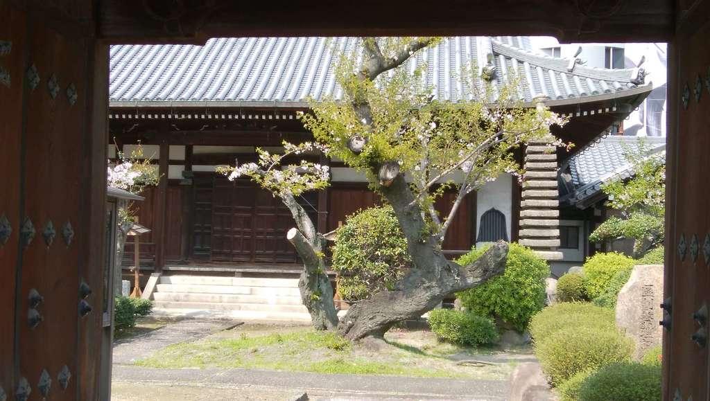 隆専寺の本殿
