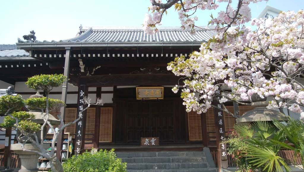 圓通寺の本殿
