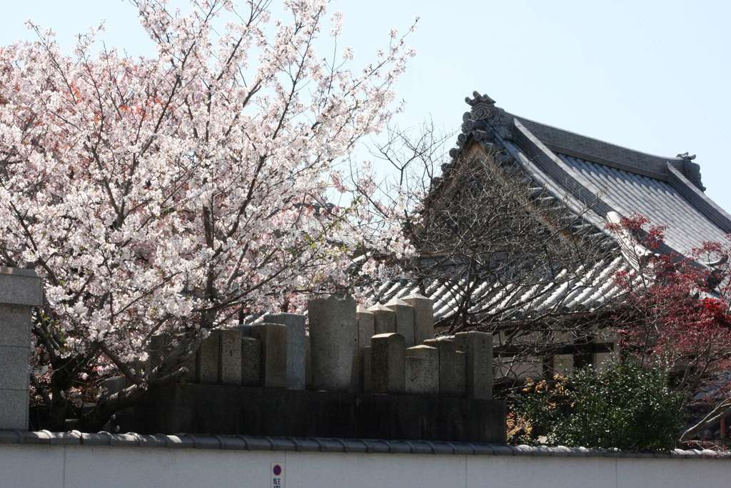 日蓮宗 安楽寺の建物その他