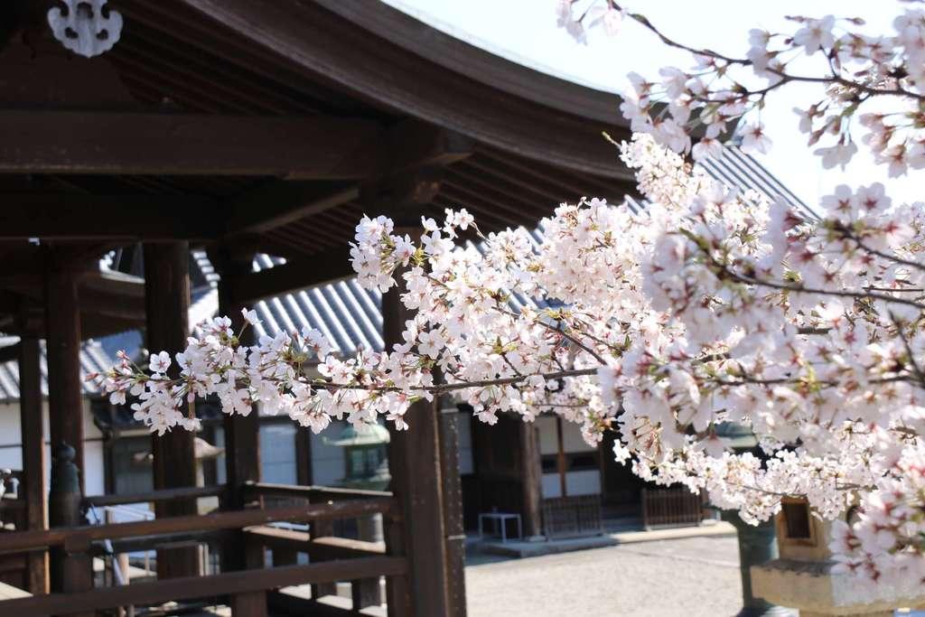 継松寺(三重県)