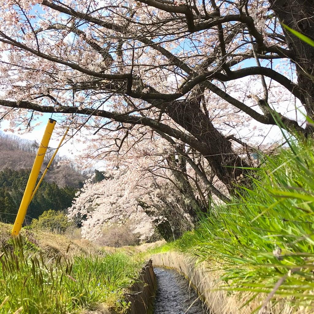 高司神社〜むすびの神の鎮まる社〜の周辺