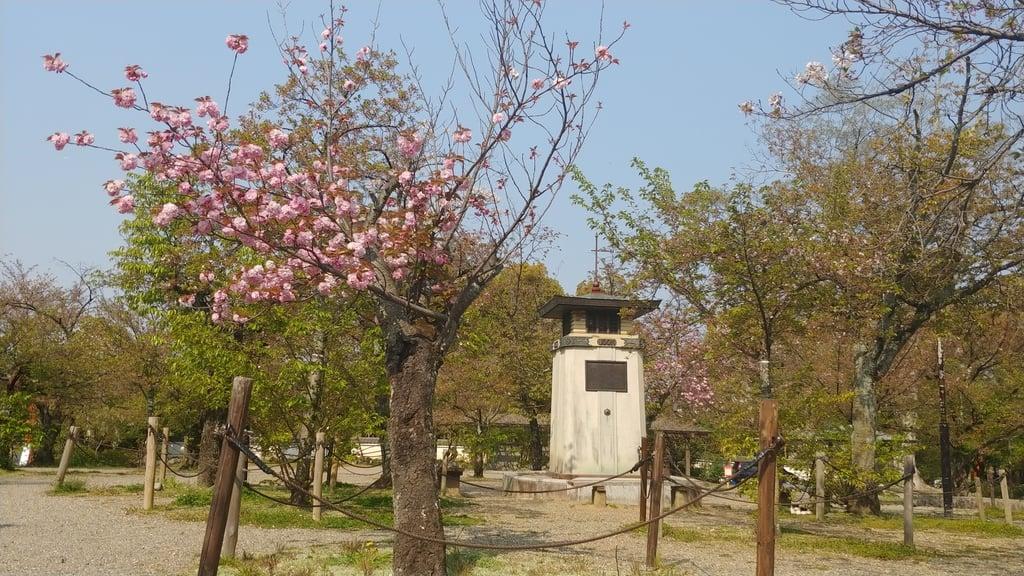 八坂神社(祇園さん)の庭園