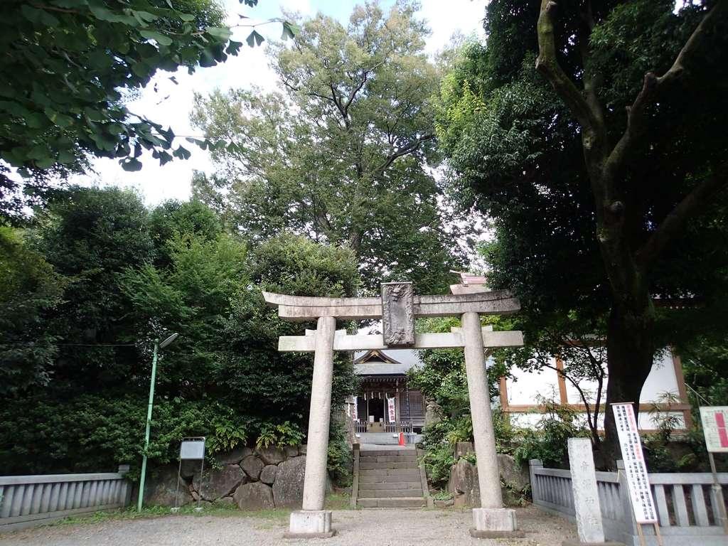 青渭神社の鳥居
