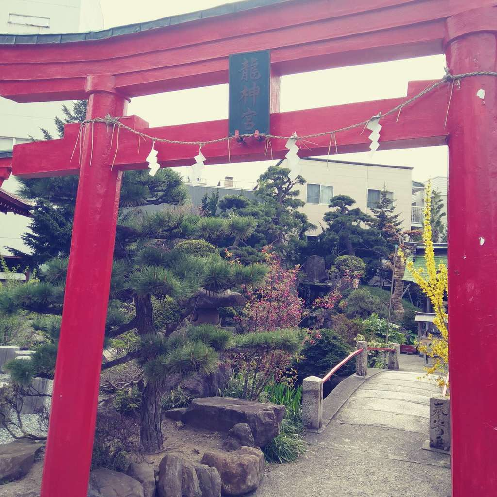 廣田神社~病厄除守護神~の鳥居