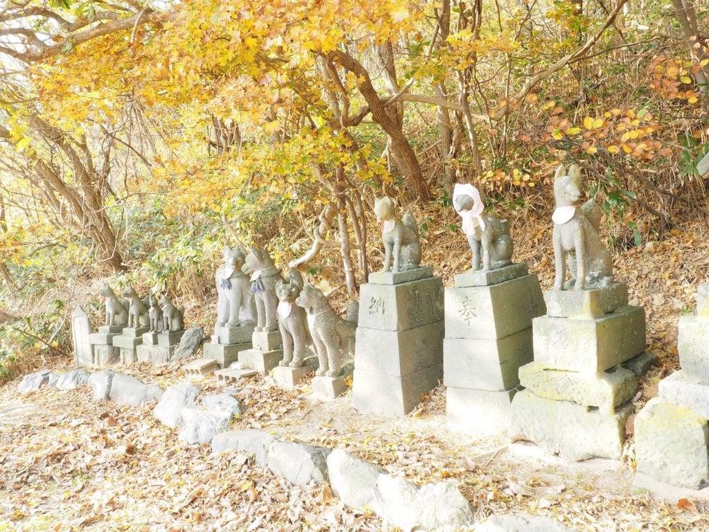 高山稲荷神社の狛犬