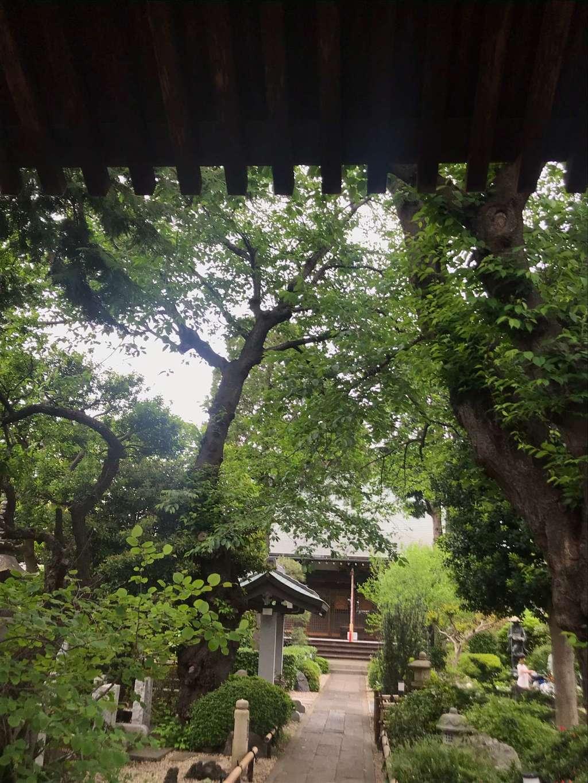 東覺院の本殿