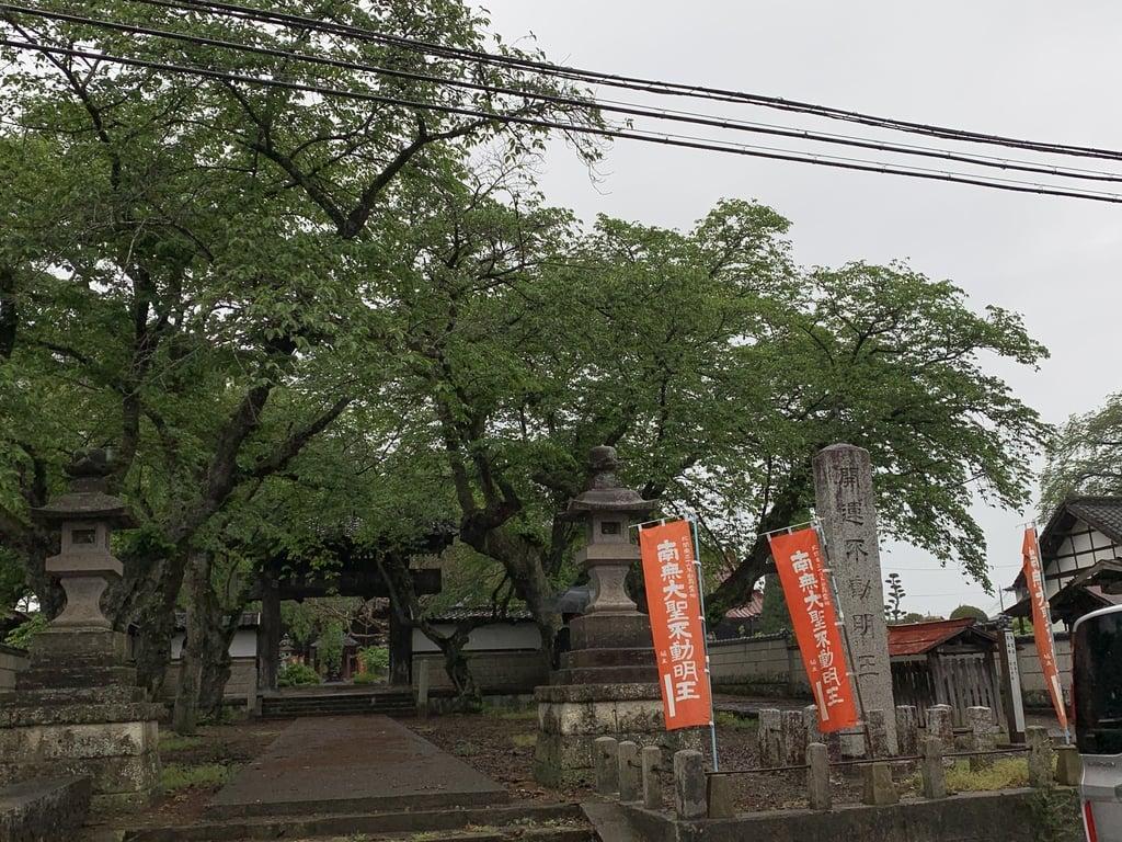 崇真寺(開運犬り切不動尊)の山門