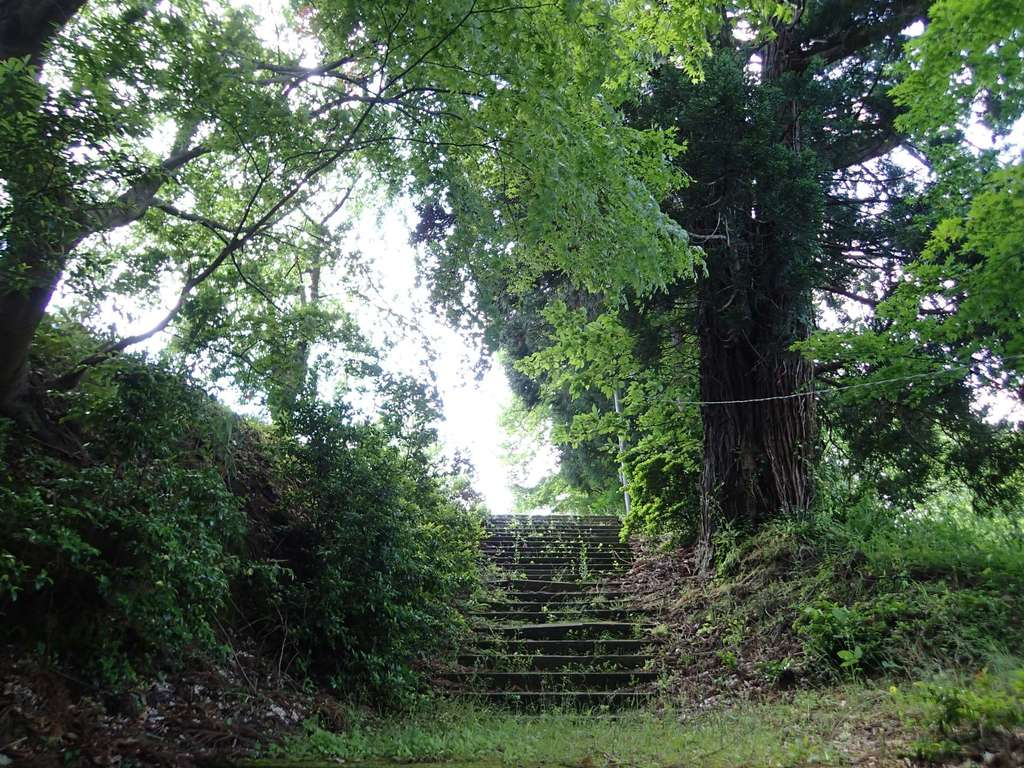 長岡神社・八幡神社・天御布須麻神社の自然
