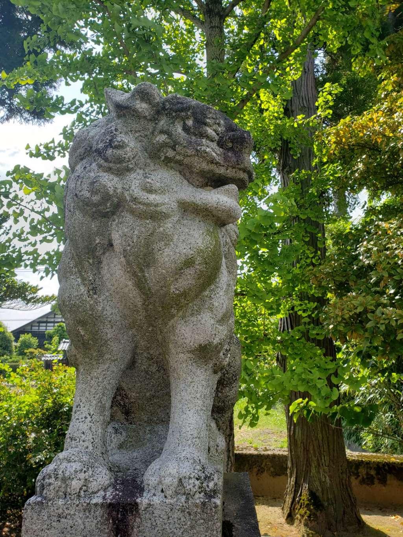 鹿嶋神社の狛犬