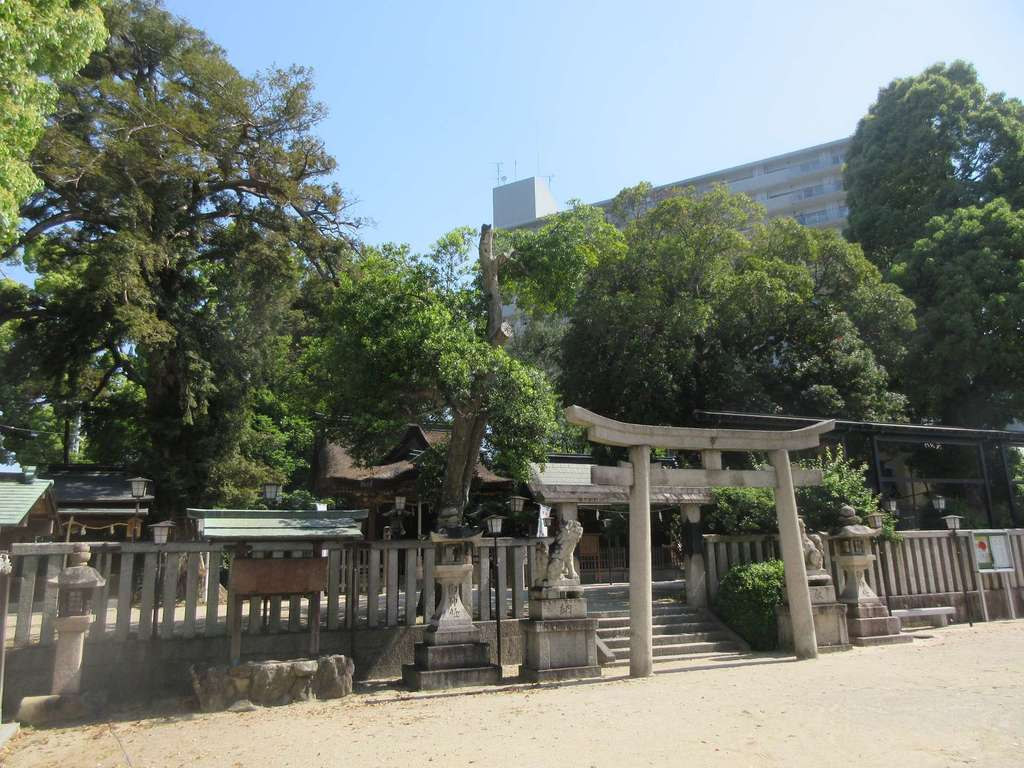 長野神社の鳥居