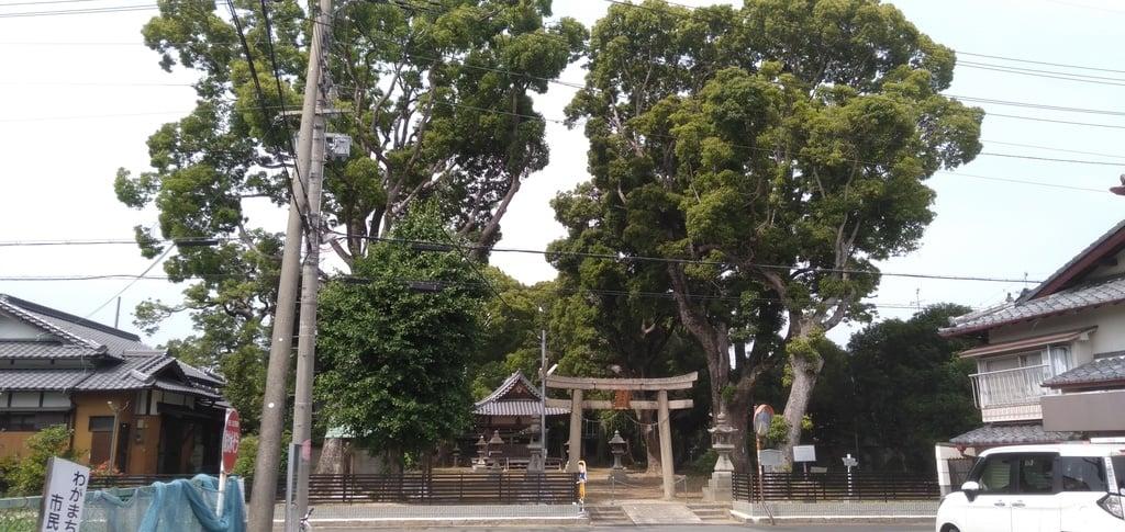 春日神社の景色