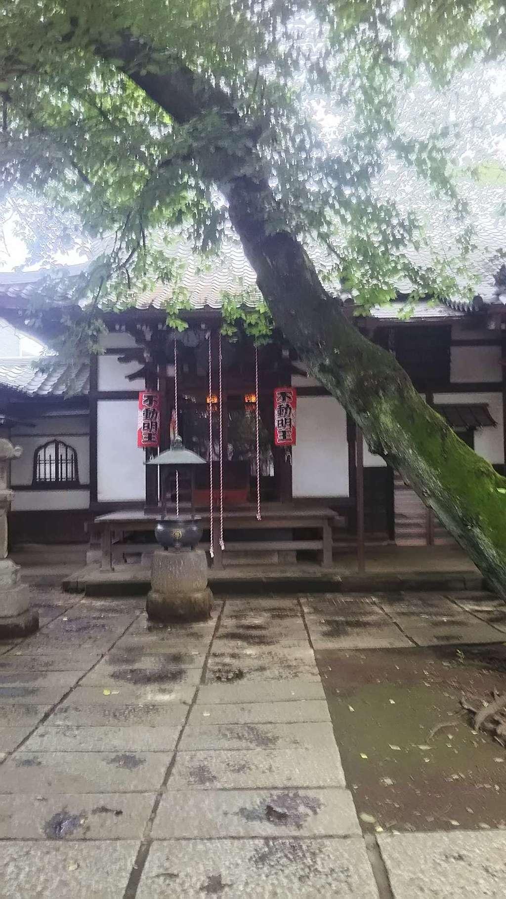 観明寺の本殿