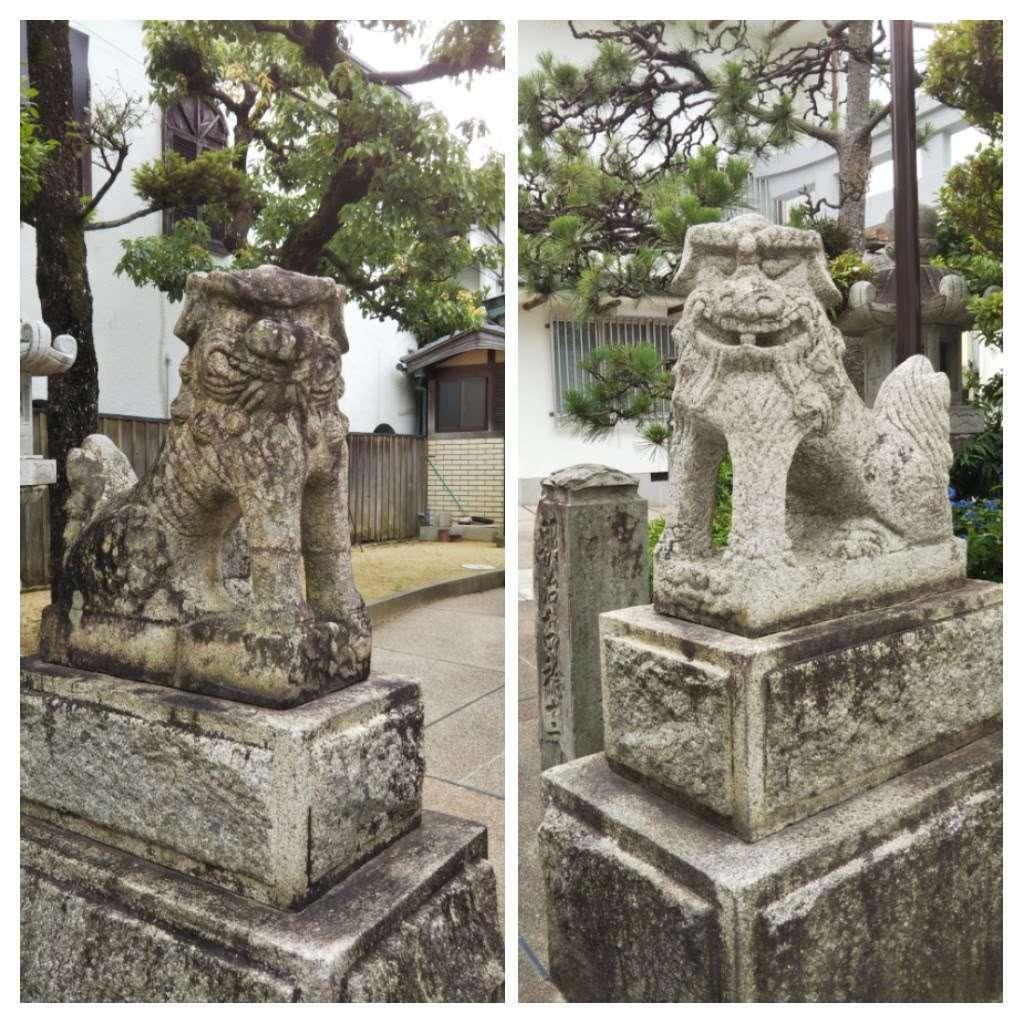 事代主神社の狛犬
