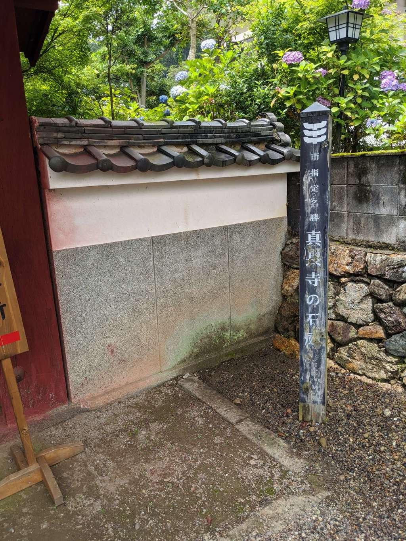 真長寺の建物その他