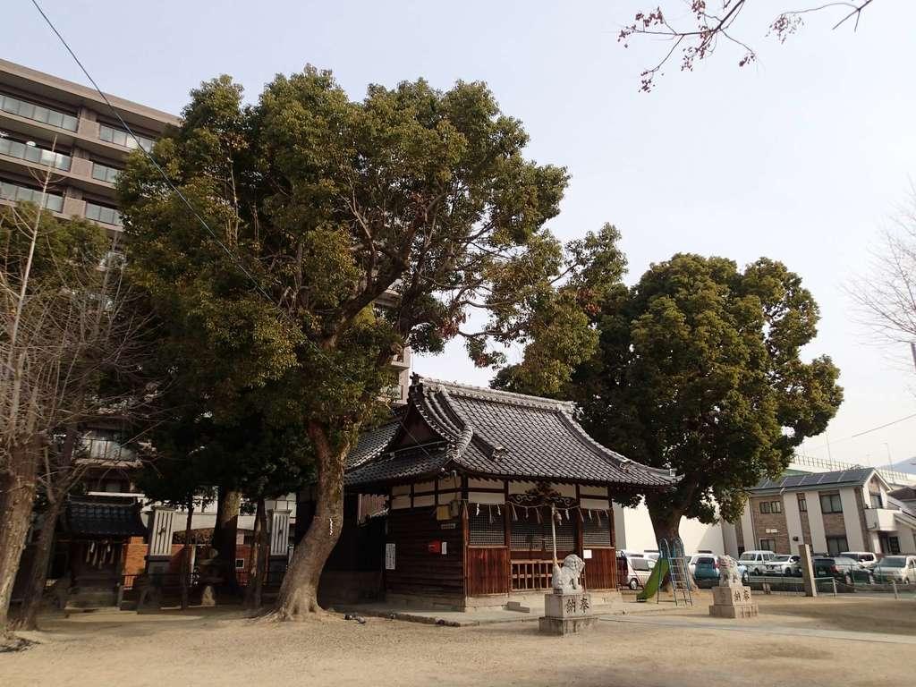 大津神社の建物その他