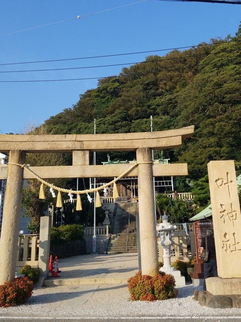 叶神社 (西叶神社)の鳥居