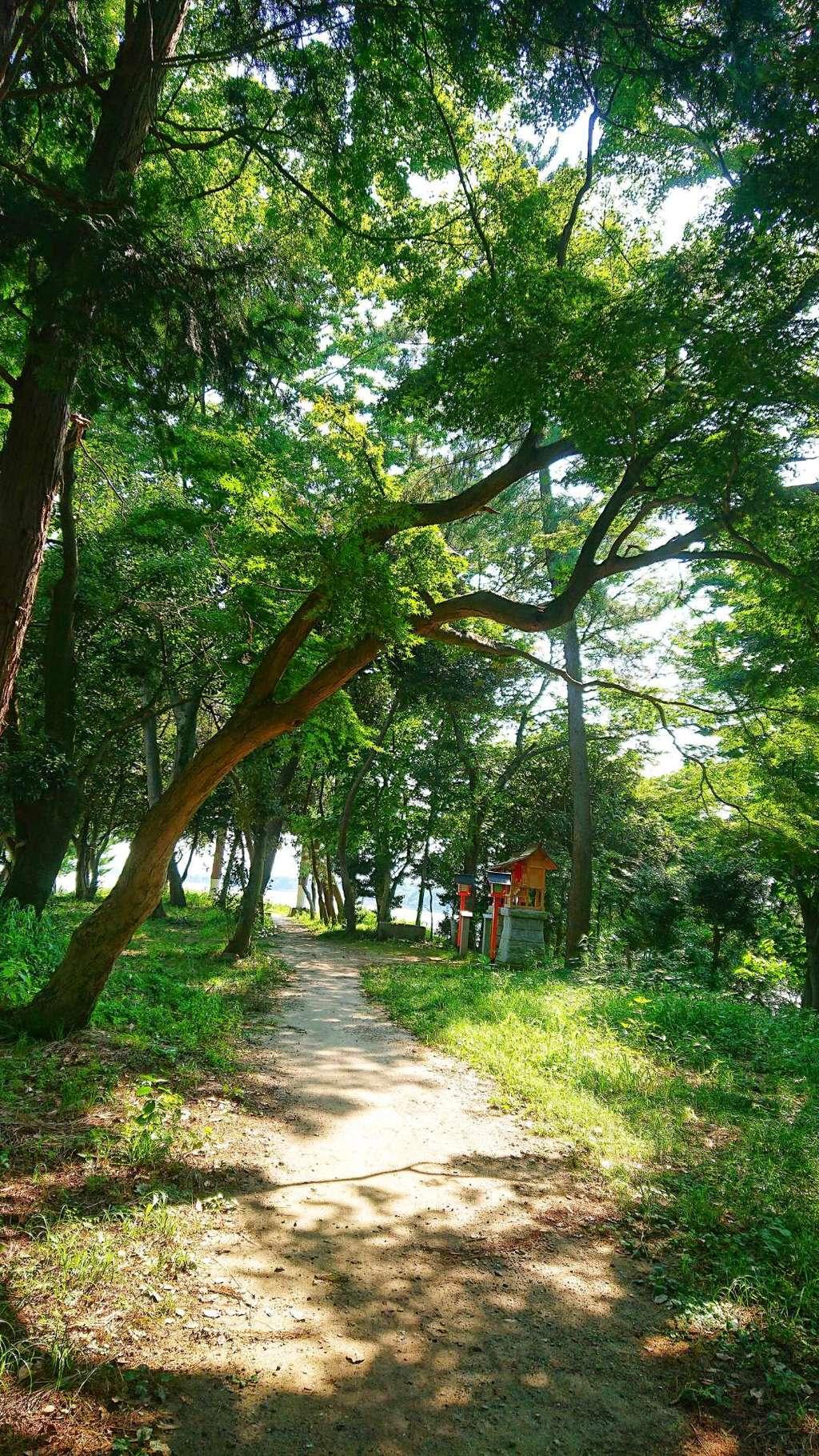 若宮神明社の周辺