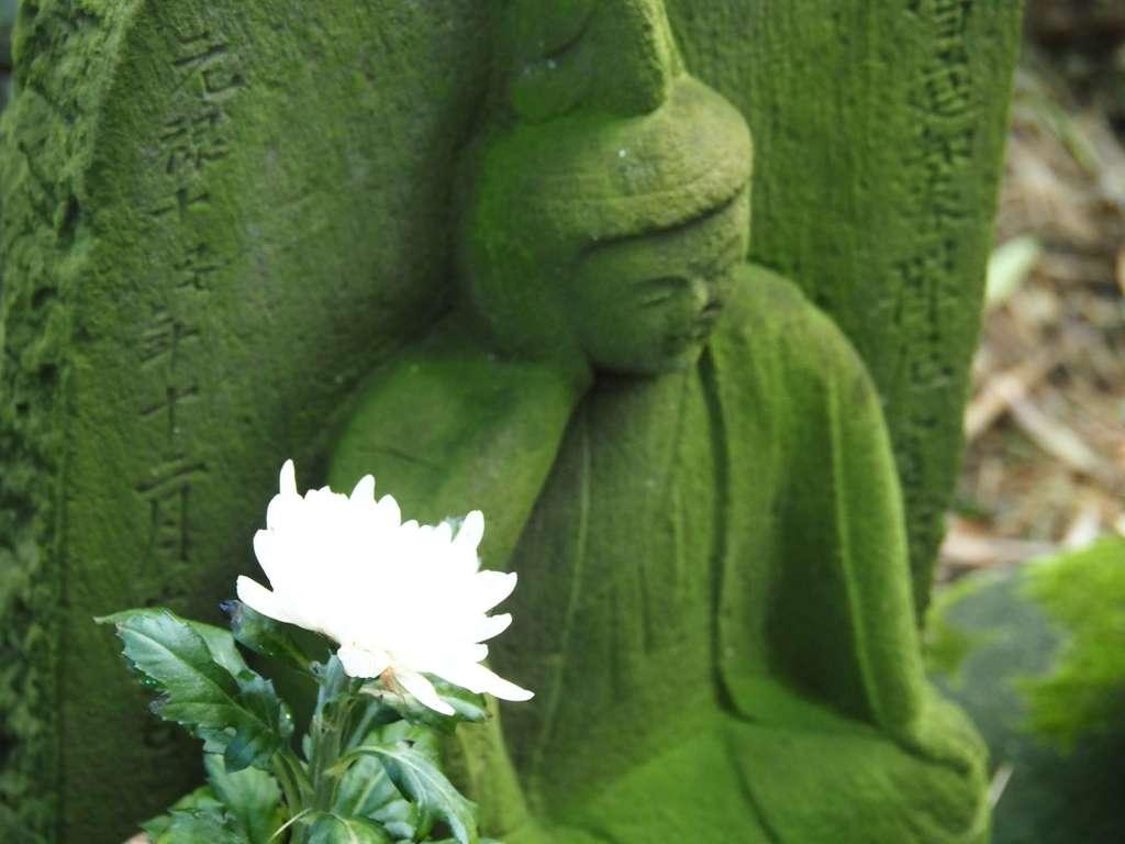 報国寺の仏像