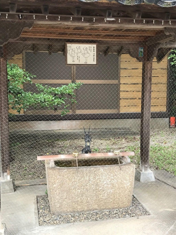 櫛代賀姫神社の手水