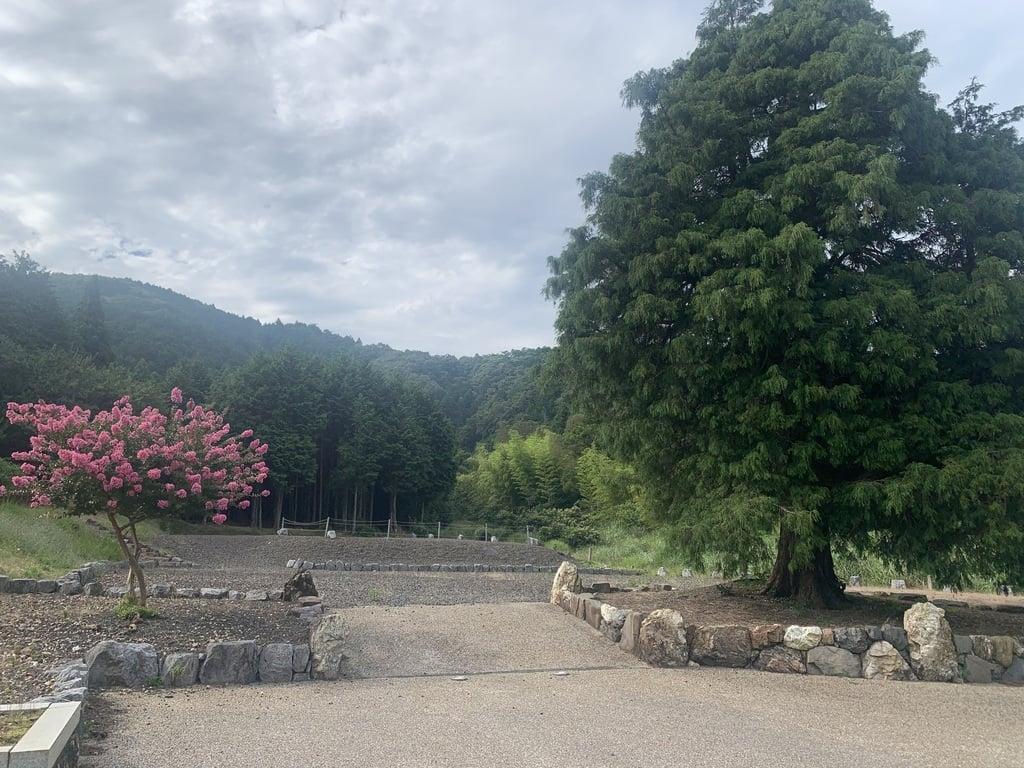 妙光寺跡の景色