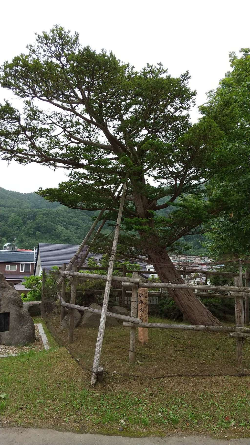 羅臼神社の庭園