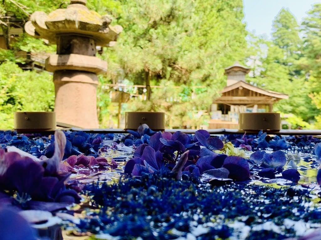 土津神社-こどもと出世の神さま-の手水