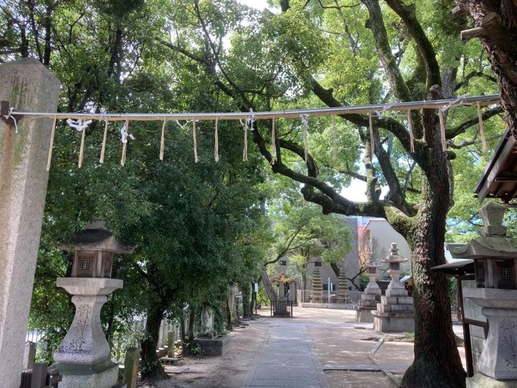 岡太神社の景色