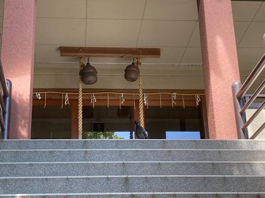 岡太神社の本殿