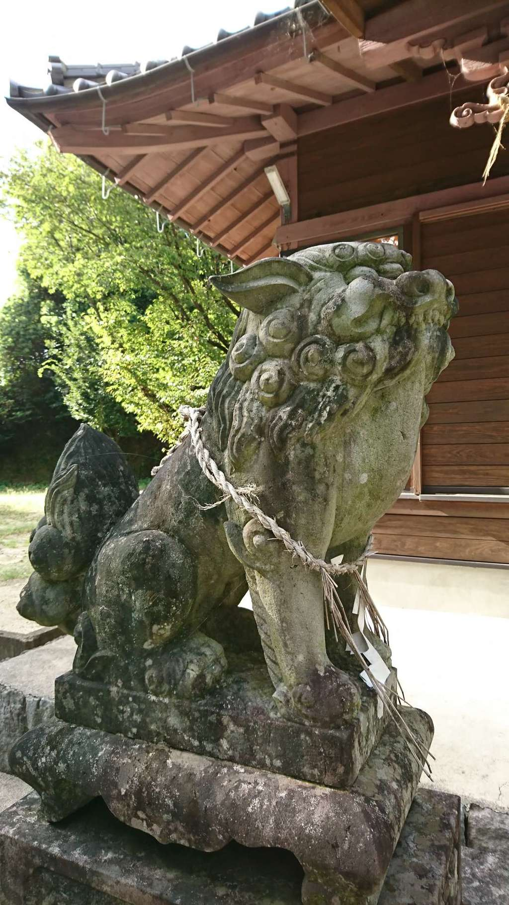 河内阿蘇神社の狛犬