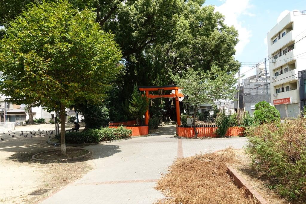 末廣稲荷神社の周辺