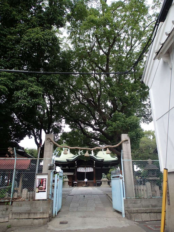 生根神社の鳥居