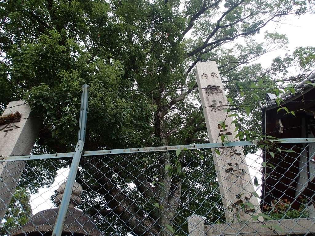 生根神社の周辺
