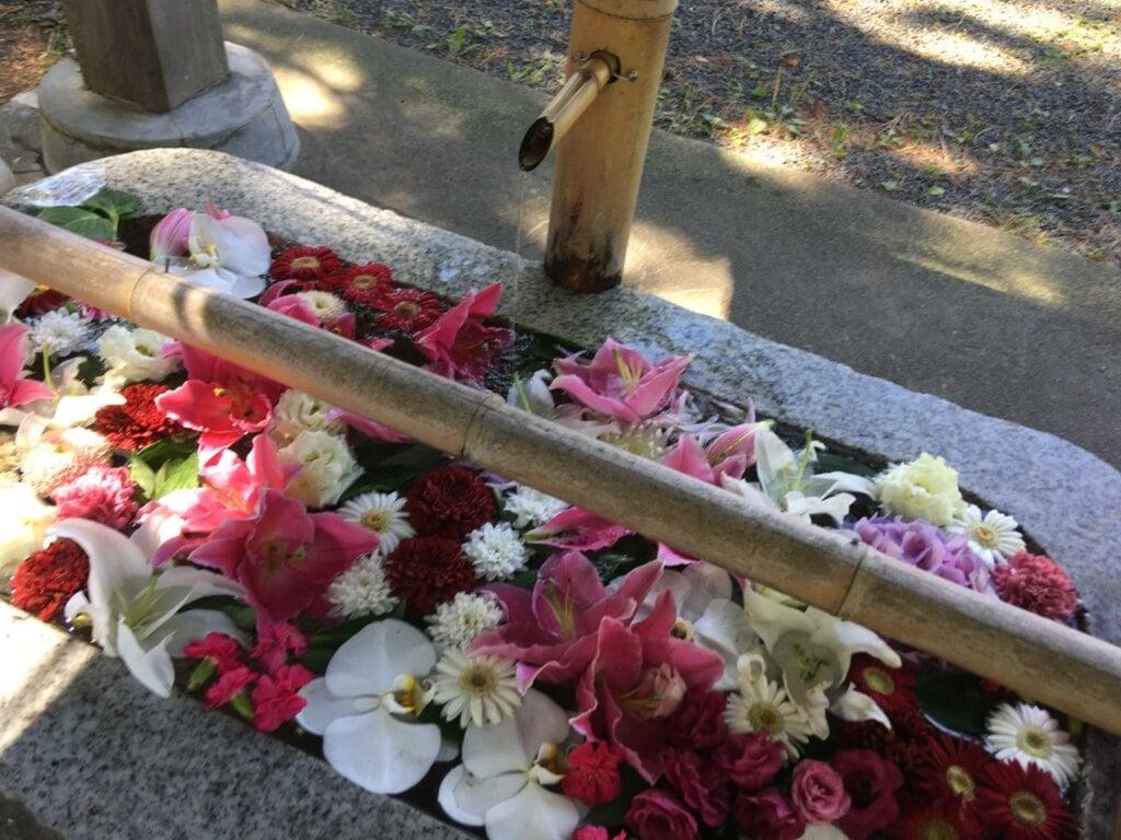 札幌伏見稲荷神社の手水