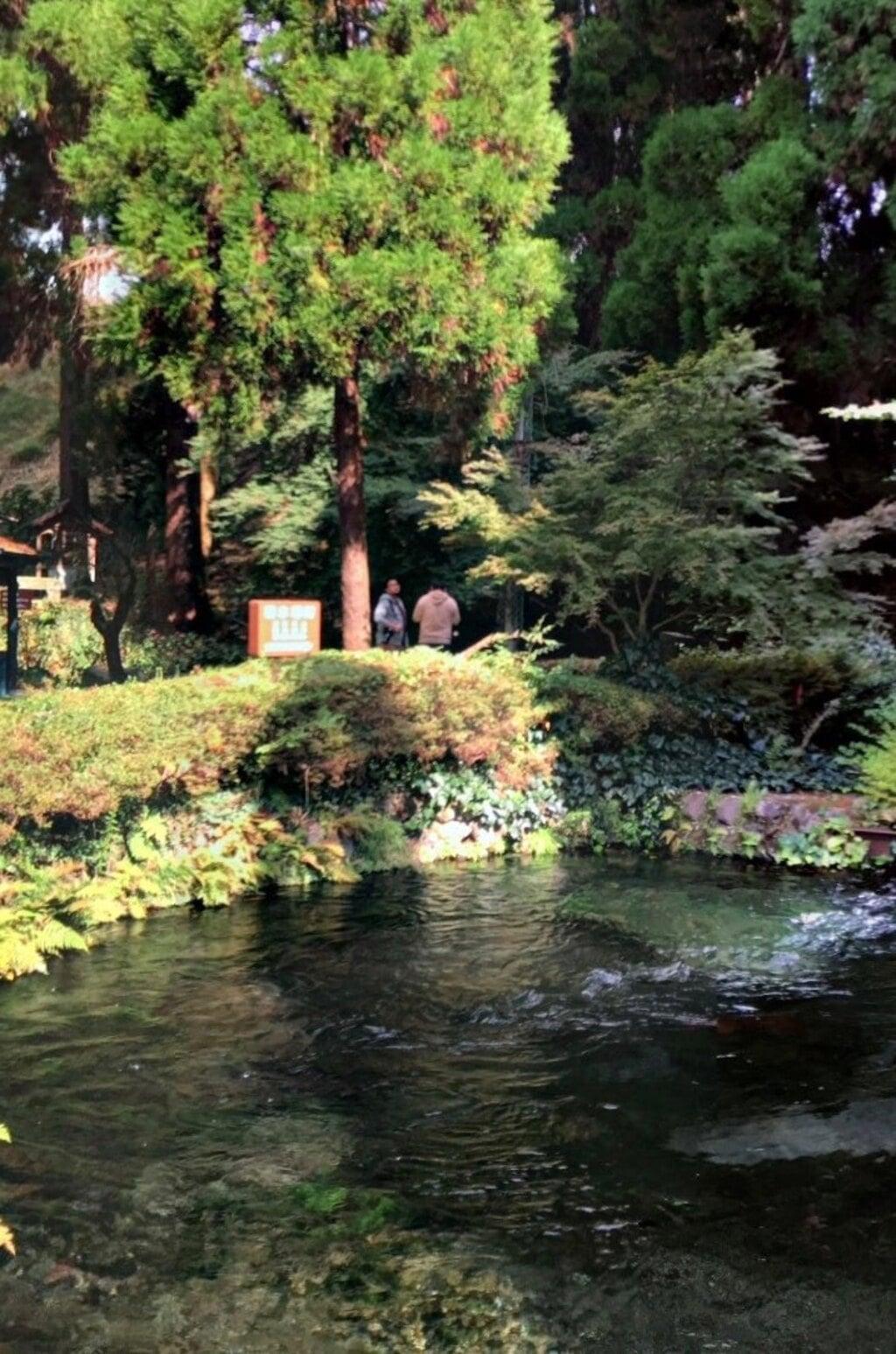 白川吉見神社の庭園