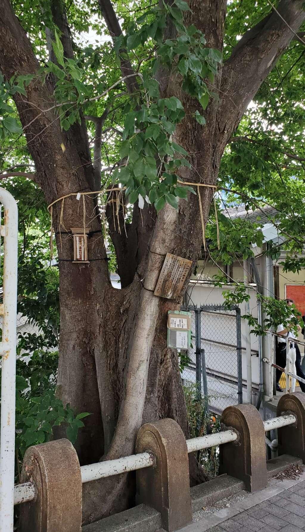 太田姫稲荷神社跡(一口神社)の本殿