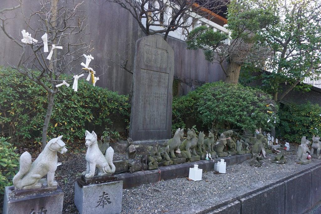 赤羽八幡神社の狛犬