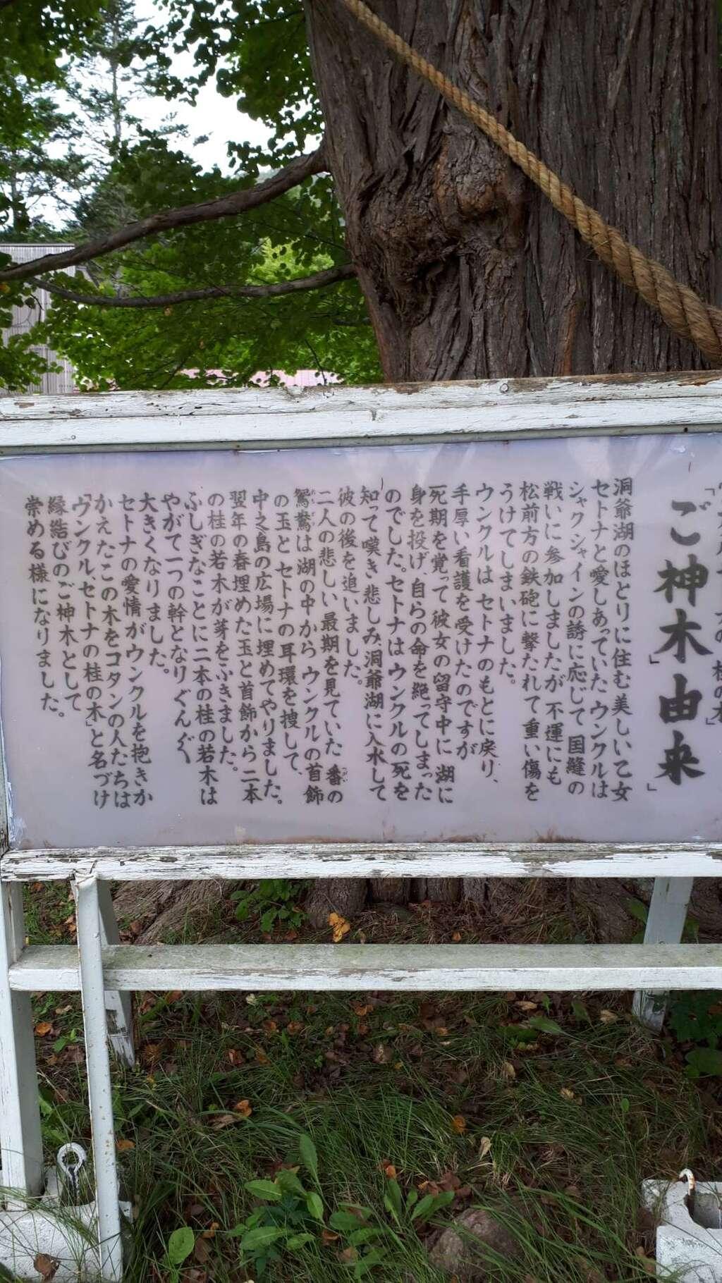 神社(洞爺湖中の島)の歴史