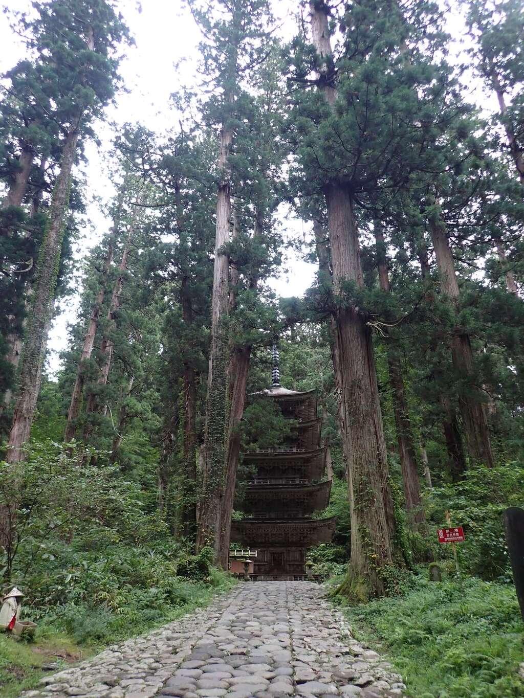 出羽神社(出羽三山神社)~三神合祭殿~の自然