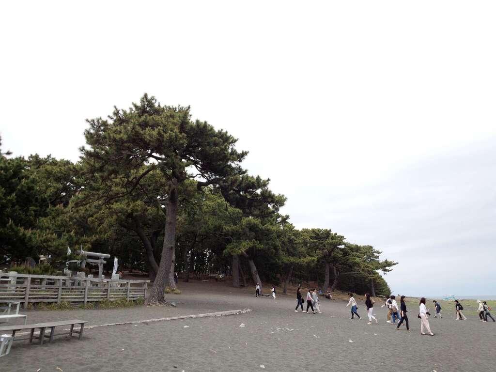 御穂神社の周辺