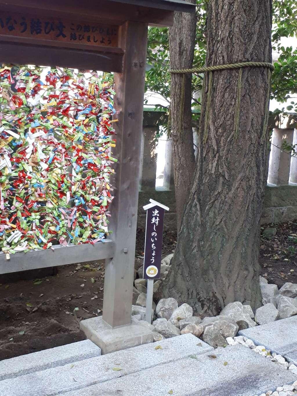 行田八幡神社の自然