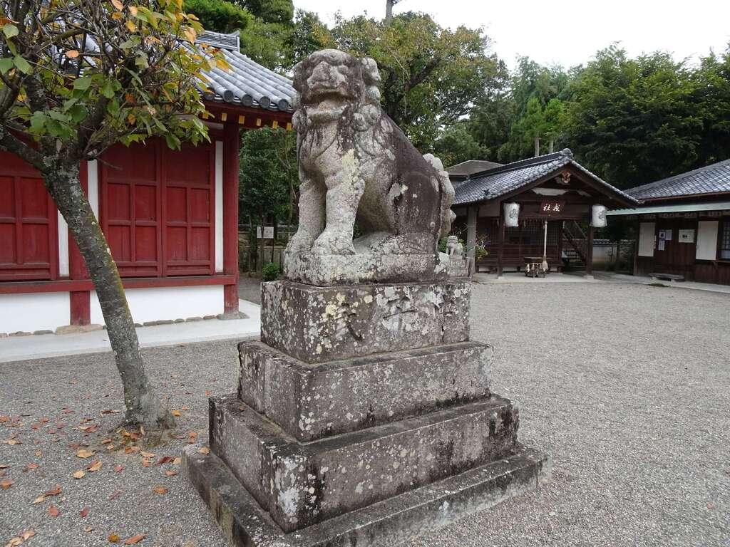 櫻井神社の狛犬